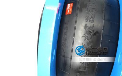 稀酸排出泵出口橡胶减震器,售后完善